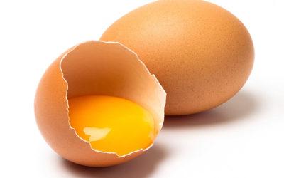 Te lo ponemos a Huevo