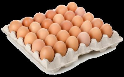 Arquitecto, te lo ponemos a huevo